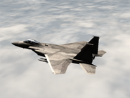 AFD2 F-15C Player (2)