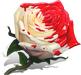 Окрашенная роза.png