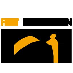 FlyPenguin.png