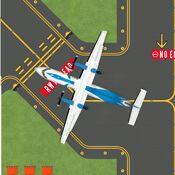 Q300 Goosewings.jpg