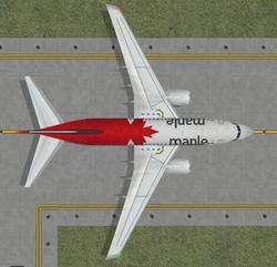 737 MAPLE