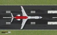 Maple on the Runway.jpg