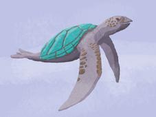 Turtledove b 800.png