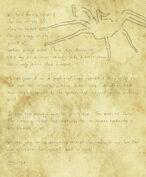 Spider Notes.jpg