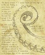 Kraken Notes.jpg