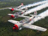 Aerostars Formation Aerobatic Team