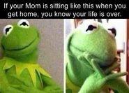 Kermitmeme