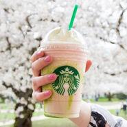 031616-starbucks-cherry-blossom