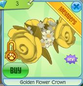 Golden flower crown 2.PNG