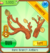 Rare Branch Antlers.png