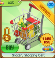 Grocery Shopping Cart.PNG