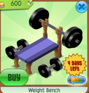 Weight Bench purple.PNG
