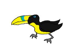 Pet toucan.png