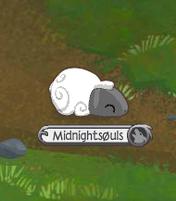 Sheep Sleeping.png