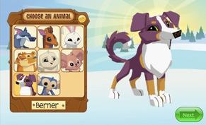 Berner animal jam classic in the choose an animal screen.png