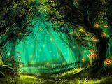 Spirit Groves