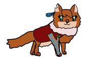 Kaomi, the Dhole Alpha