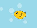 Pet Pufferfish