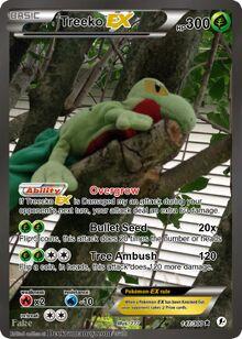 Treecko.jpg