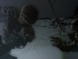 君は黒い幽霊を見たことがあるか?