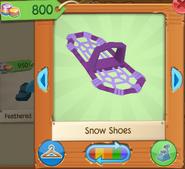 Snow shoes 2