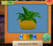 Plantb 2