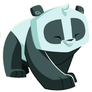 Pandagraphic3