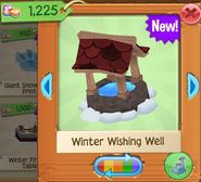 WinterW 4