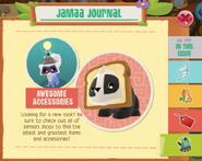 Journal 029 5