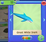 AQ SharkW 2