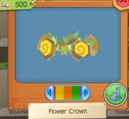 Flower Crown 7