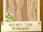Ancient Tree Wallpaper