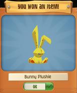 P Bunny 6