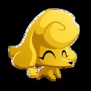 Yellowpoodle