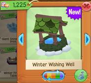 WinterW 6