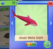 AQ SharkW 6