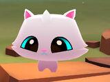 Pet Persian Kitty