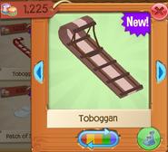 Toboggan 5