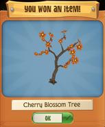 CherryT 3
