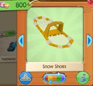 Snow shoes 1