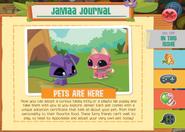 Journal 019 1