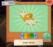 Snowshoes4