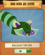 RaccoonH 4