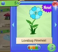 LoveW 5