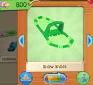 Snow shoes 4