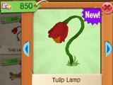 Tulip Lamp