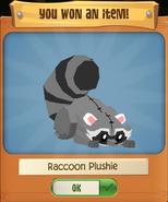 P Raccoon 8