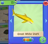 AQ SharkW 8