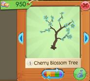 CherryBT 6