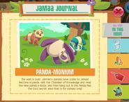 Journal 029 1